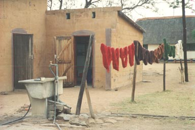 Odi Village, June 1995: Skeins of brightly colored wool dry in the yard of the Odi Weavers' workshop. The wool itself is imported from South Africa; for Botswana, a hot, desert country, is not suited for raising sheep. Once the raw wool arrives, the weavers wash, dye and then spin it into loops using hand cranked, wooden spinners. Photo by Returned Peace Corps Volunteer Susan Ross.